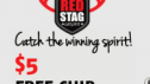 red stag no deposit bonus 2018