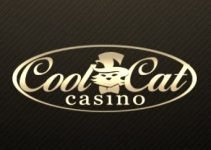 Cool Cat Casino $100 No deposit bonus. May 31, 2014
